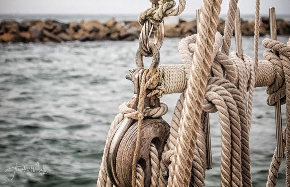 Maritimer Mittwoch 2/2020