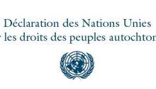 Logo de l'Organisation des Nations Unies pour la Déclaration des Nations Unies sur les droits des peuples autochtones