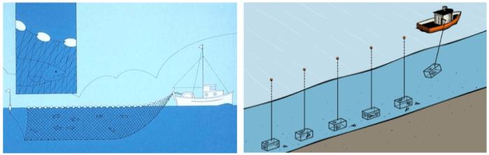La figure 1 montre le déploiement d'un filet maillant (à gauche) et de casiers à homard (à droite), deux types d'engins de pêche commerciale qui contiennent du plastique.]