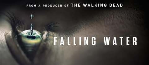Falling Water logo dream study