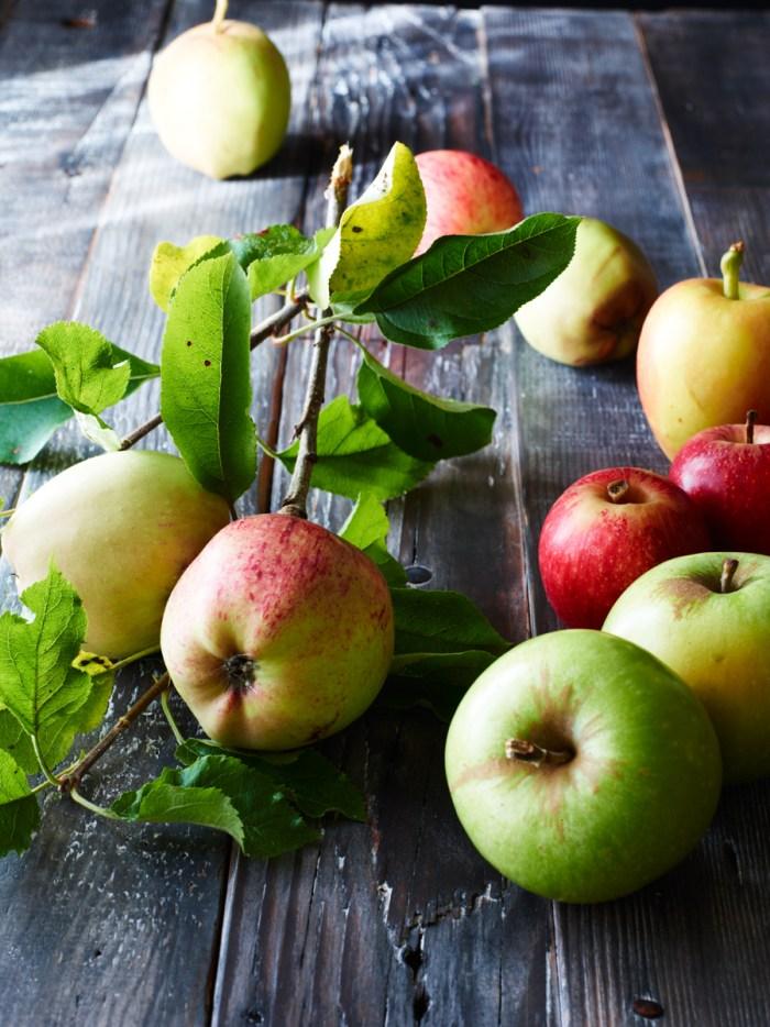 Apples_23426