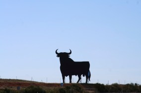 Roadside bull near Toledo, Castilla-La Mancha, Spain