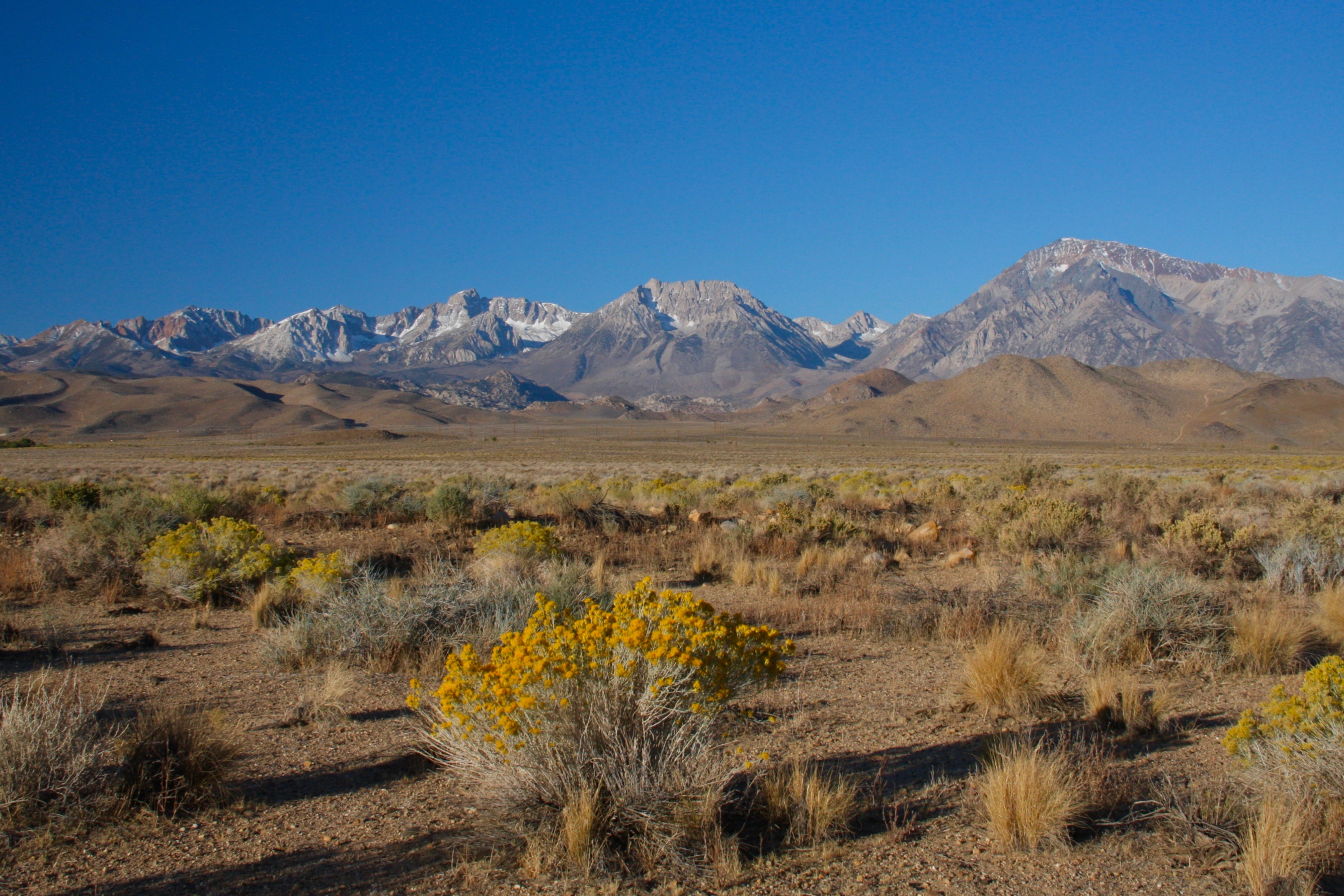 Native American Petroglyphs And California S Highest