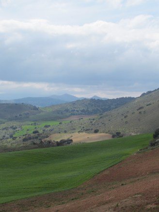 green-brown-hills