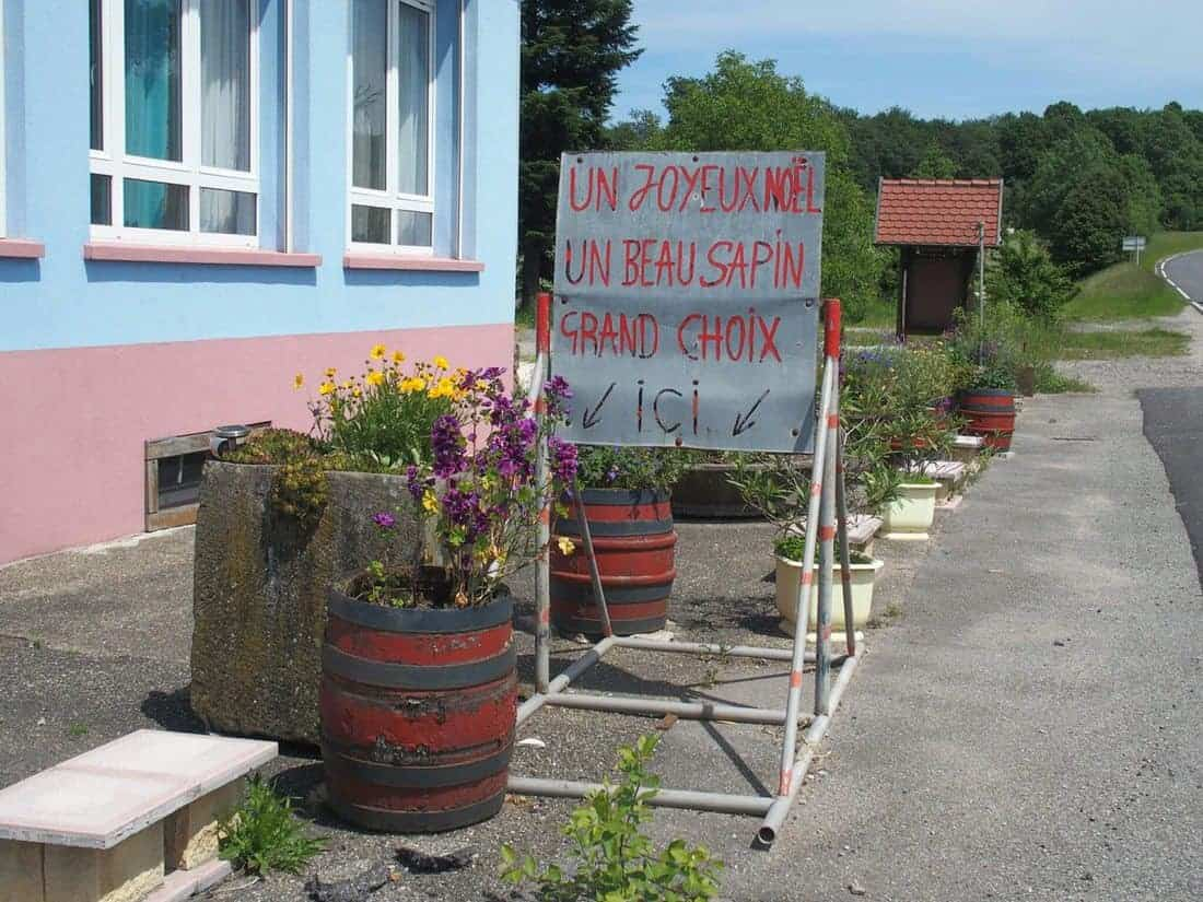 Christmas trees for sale in summer, sign in French, France (2014-06)