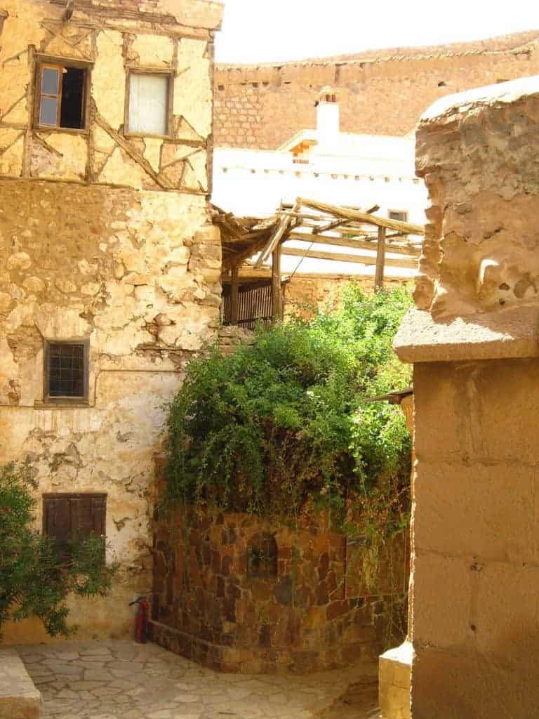 The Burning Bush at St Catherine's monastery, Sinai, Egypt (2012-07)