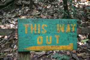 This Way Out sign in Kakum National Park, Ghana (2011-12)