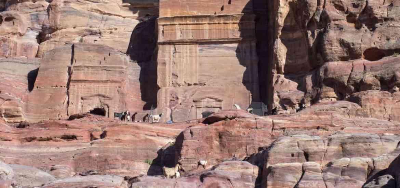Tombs as goat shelters in Petra, Jordan (2016-12-28)