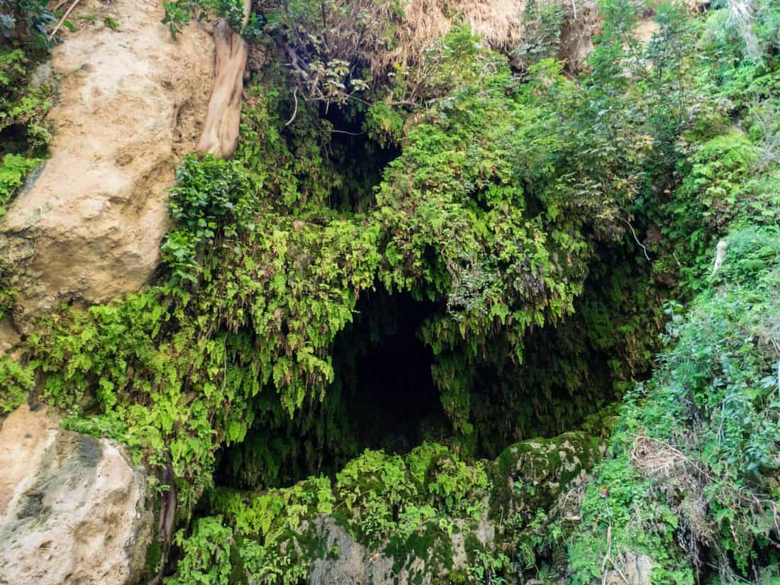 Lush green David's Waterfall in Ein Gedi Nature Reserve, Israel (2017-01-04)