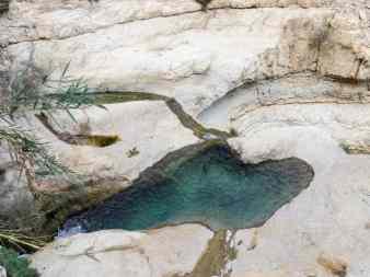 Pools near Dodim Cave in upper David Valley, Ein Gedi Nature Reserve, Israel (2017-01-04)