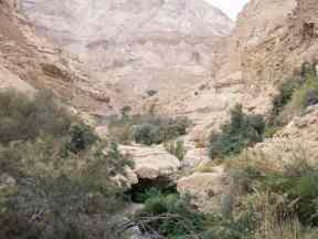 Arugot Valley, Ein Gedi Nature Reserve, Israel (2017-01-04)
