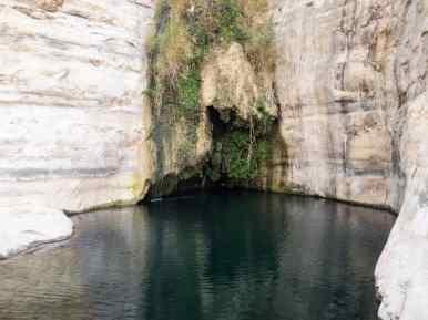 Ein Akev spring with deep pool, Israel (2017-02-09)