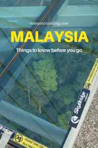This Malaysia guide contains all the basic info that makes planning a trip easier: cultural background, visa rules, what kind of accommodation to expect, public transport, and much more. Get ready to travel one of Asia's wildest, most cosmopolitan countries! #malaysiatrulyasia #southeastasia #solotravel