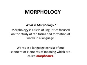 5 Facts About Morphology in Linguistics
