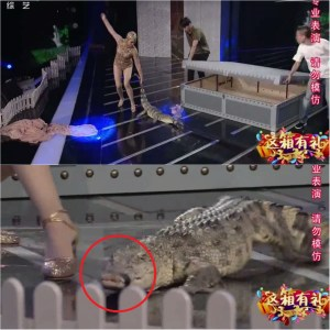 Chinese Woman Bends Down To Kiss A Crocodile, What Happens Next Will Shock You