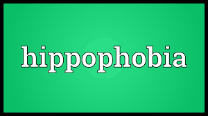 What Is Haphephobia;What Does It Do With Examples
