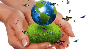 What Is Green Economy;What Does It Do In Economic System