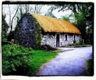 Aine's cottage