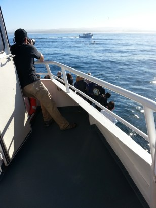 Guide with Telescopic Lens taking photo of Orcas