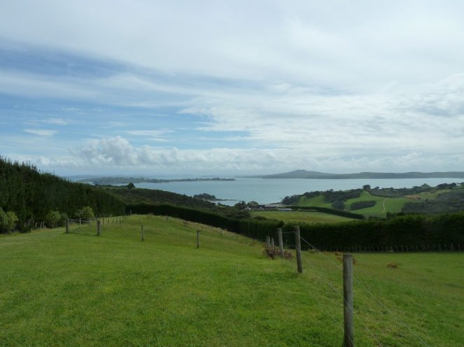The views from Mudbrick Vineyards