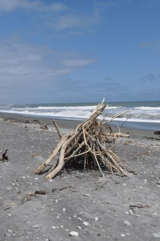 Hokitika drift wood
