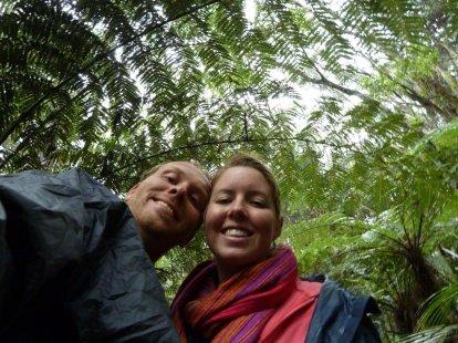 Waitangi Treaty House forest walk