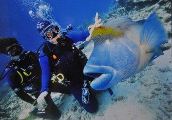 Eva playing with Wally the Giant Maori Wrasse