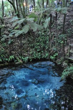 Sacred Fairy Springs