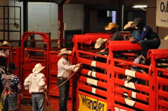Stockyards Rodeo