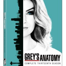 Grey's Anatomy: The Complete Thirteenth Season (Walt Disney Studios Home Entertainment)