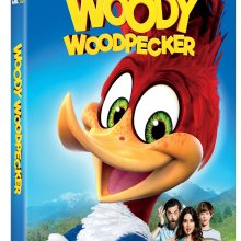 Woody Woodpecker DVD/Digital HD cover (Universal Pictures Home Entertainment)