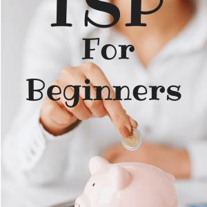 TSP For Beginners