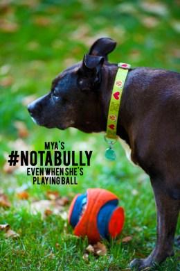 Mya Playing Ball