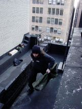 Running off the roof -2