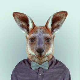 zoo-portraits-7