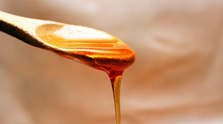 Image result for miel gastronomia