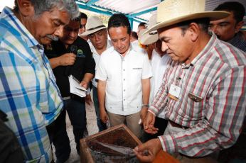 Carlos-Joaquin-Seguimiento-del-Proyecto3