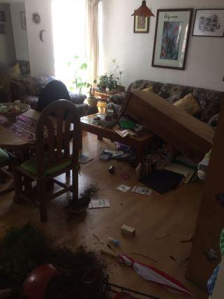 Terremoto4