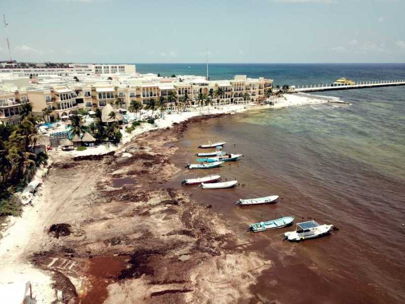 POSPONEN CUMBRE DE SARGAZO POR FALTA DE INTERÉS: Anuncia el gobierno del estado la cancelación del Encuentro de Alto Nivel para atención de Sargazo en el Gran Caribe por falta de interés de otros países