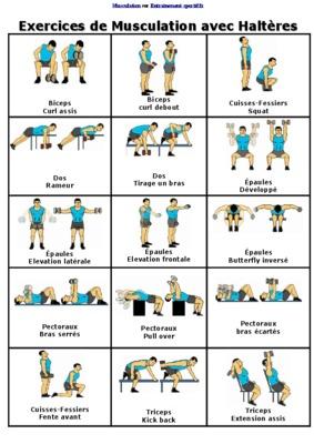 Exercices De Musculation Avec Des Halterespdf Notice
