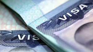 Más de 700 mil personas violan visas y se quedan en EEUU