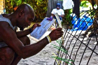 RD transfiere modelo para restauración arrecifes de coral Honduras