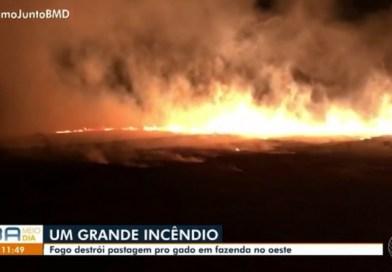 LEM BA : Fogo destrói fazenda que ficava em área de reserva ambiental na Bahia