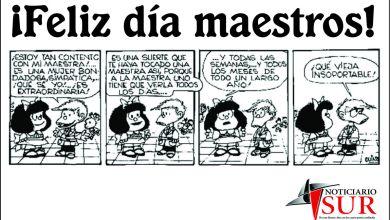 Photo of 11 DE SEPTIEMBRE: MÁS SONRISAS DOCENTES (más humor en su día)