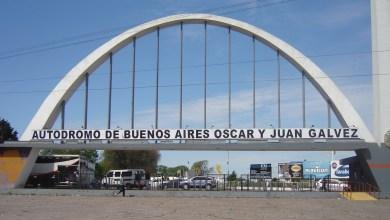 Photo of EL ÁRBOL TAPA EL BOSQUE