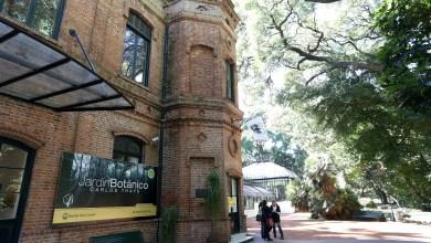Photo of Rechazan las modificaciones al jardín Botánico