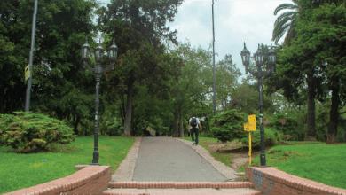 Photo of No a la tala de los árboles del Parque Las Heras