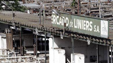 Photo of Mercado de Hacienda: el nuevo negocio inmobiliario.