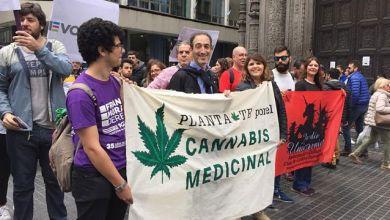 Photo of Diputados porteños y familiares se plantaron por el cannabis medicinal