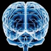 Estudo científico afirma que ter religião atrofia o cérebro